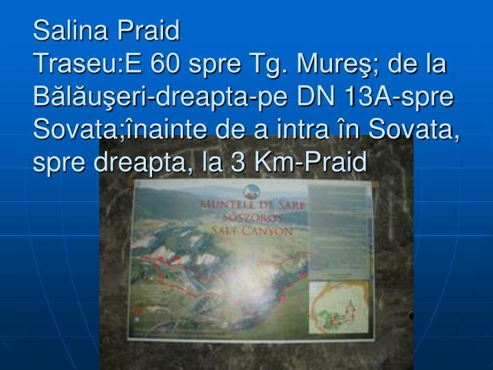 Salina Praid