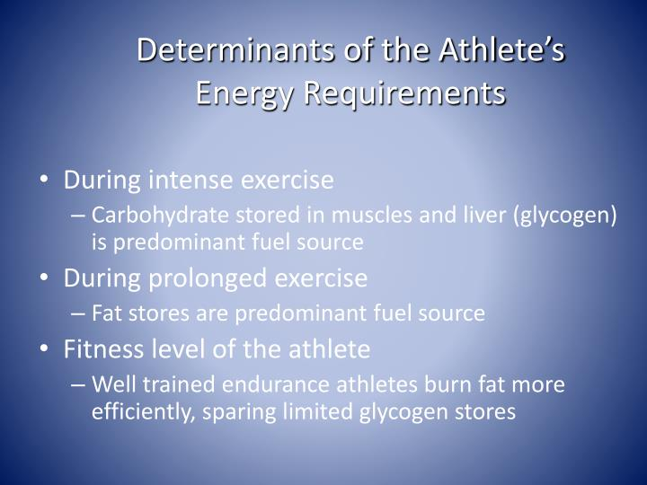 Determinants of the Athlete's Energy Requirements