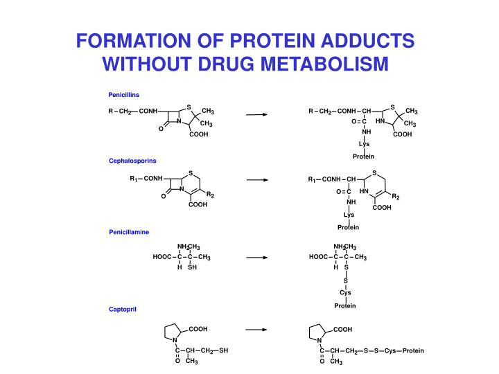 FORMATION OF PROTEIN ADDUCTS WITHOUT DRUG METABOLISM