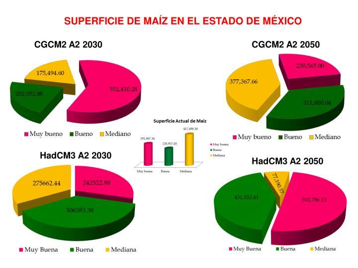 SUPERFICIE DE MAÍZ EN EL ESTADO DE MÉXICO