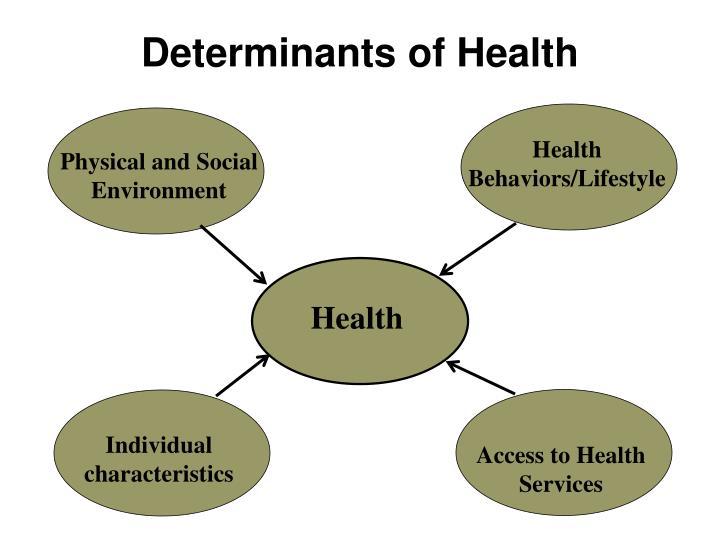 Physical and Social Environment