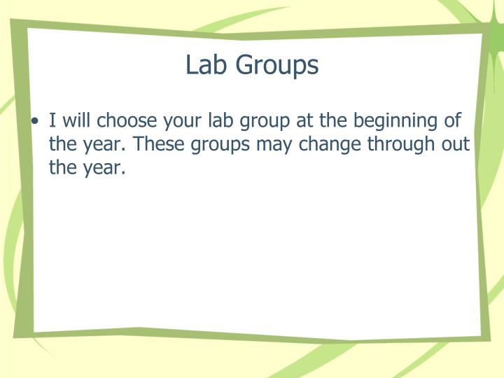 Lab Groups