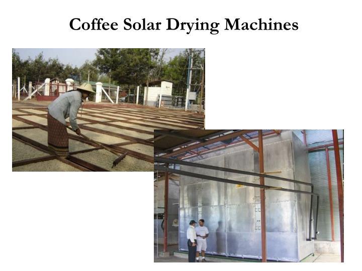 Coffee Solar Drying Machines