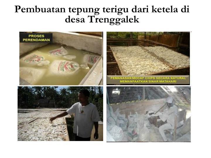 Pembuatan tepung terigu dari ketela di desa Trenggalek