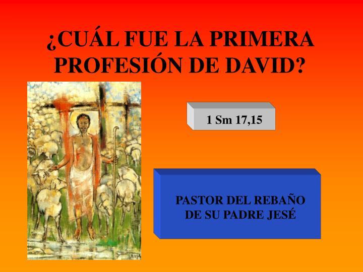 ¿CUÁL FUE LA PRIMERA PROFESIÓN DE DAVID?