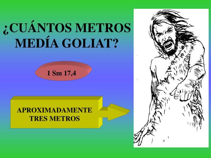 ¿CUÁNTOS METROS MEDÍA GOLIAT?