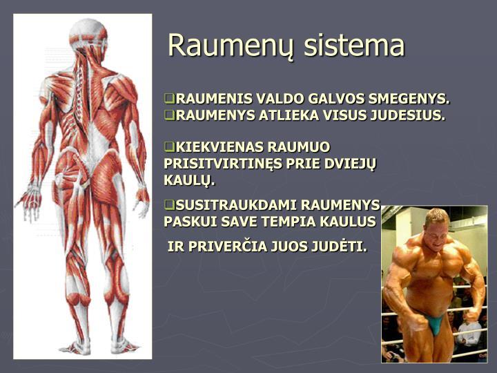 Raumenų sistema