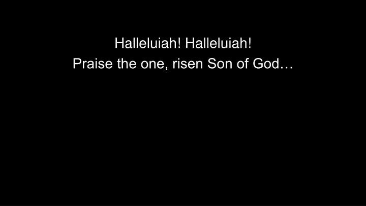 Halleluiah! Halleluiah!
