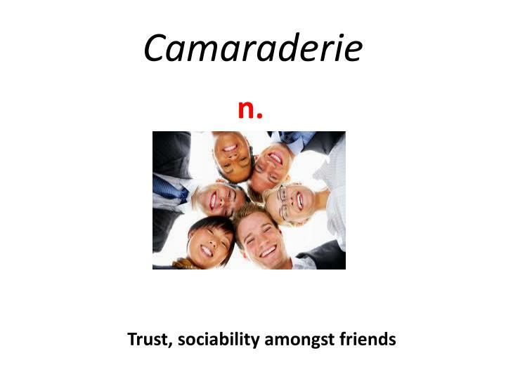 Camaraderie