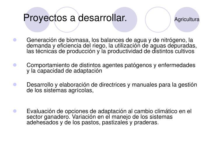 Proyectos a desarrollar.