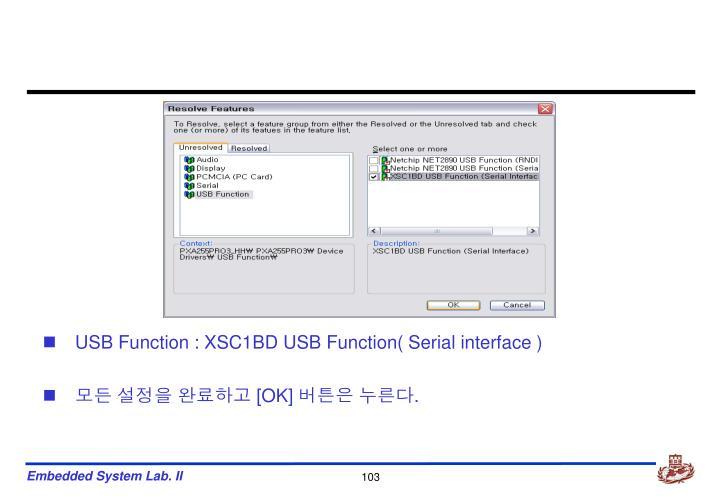 USB Function : XSC1BD USB Function( Serial interface )