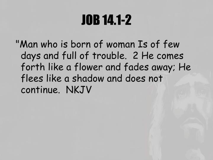 JOB 14.1-2