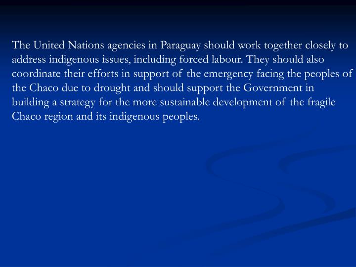 The United Nations agencies in Paraguay should work together closely to