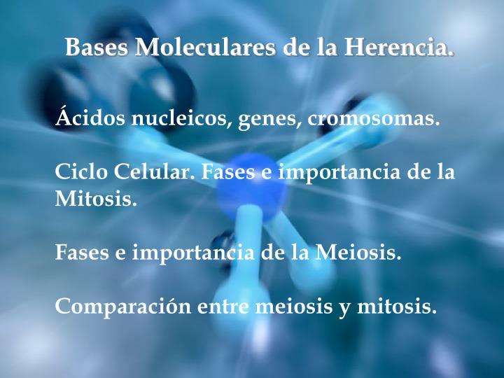 Bases Moleculares de la Herencia.