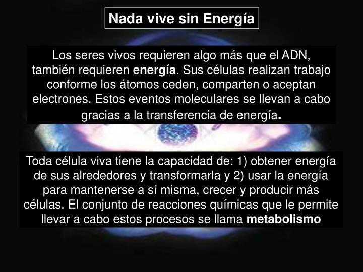 Nada vive sin Energía