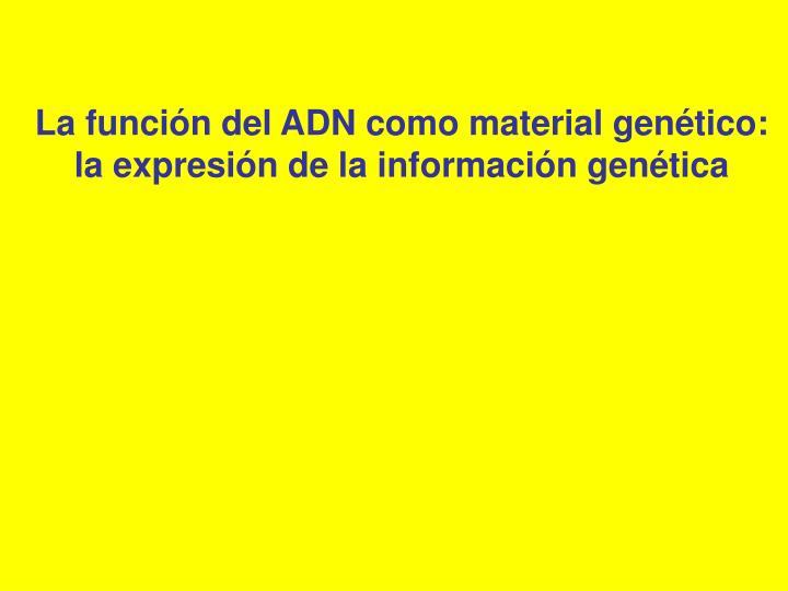 La función del ADN como material genético: