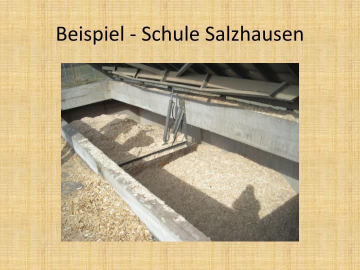 Beispiel - Schule Salzhausen