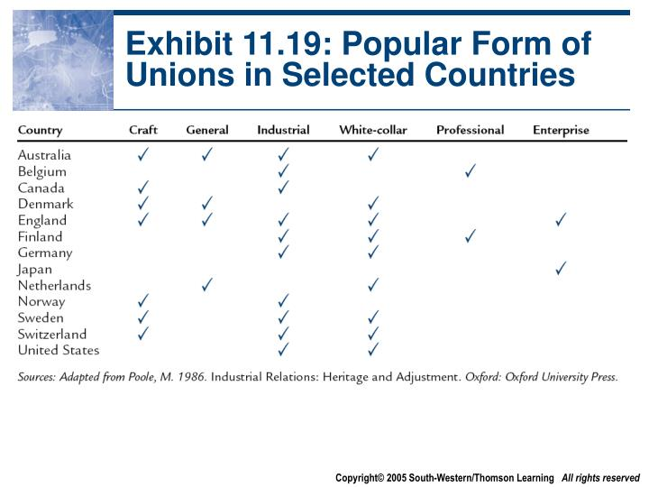 Exhibit 11.19: Popular Form of Unions in Selected Countries