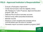 fels approved institution s responsibilities