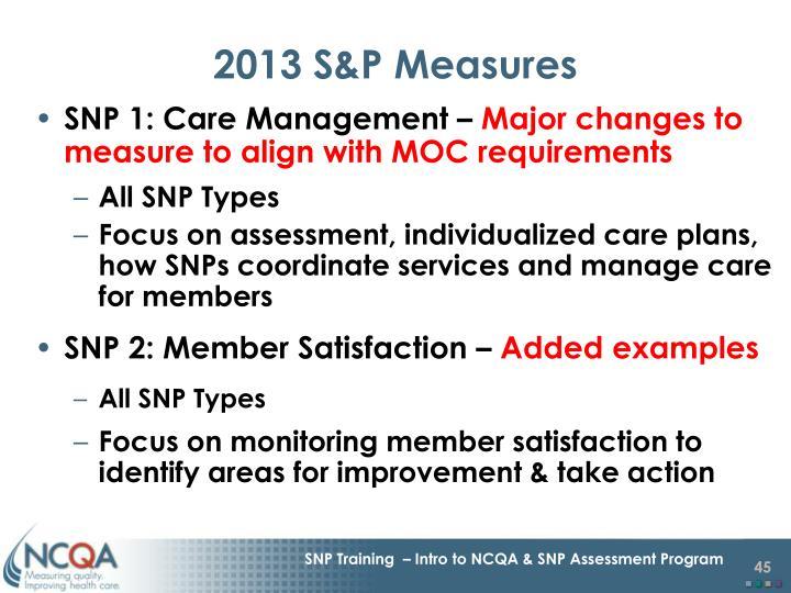 2013 S&P Measures