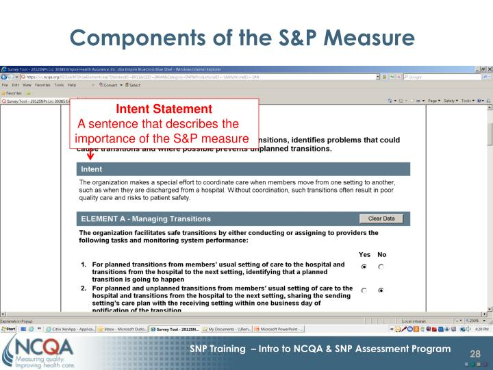 Components of the S&P Measure