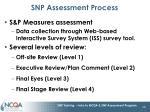 snp assessment process1