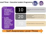 level three executive leaders programme