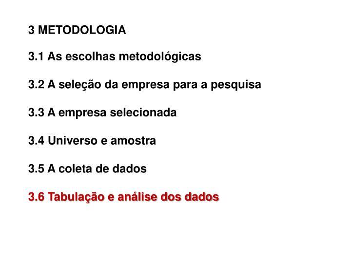 3 METODOLOGIA