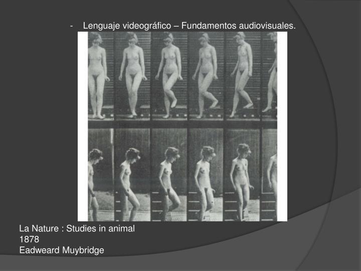 -    Lenguaje videográfico – Fundamentos audiovisuales.
