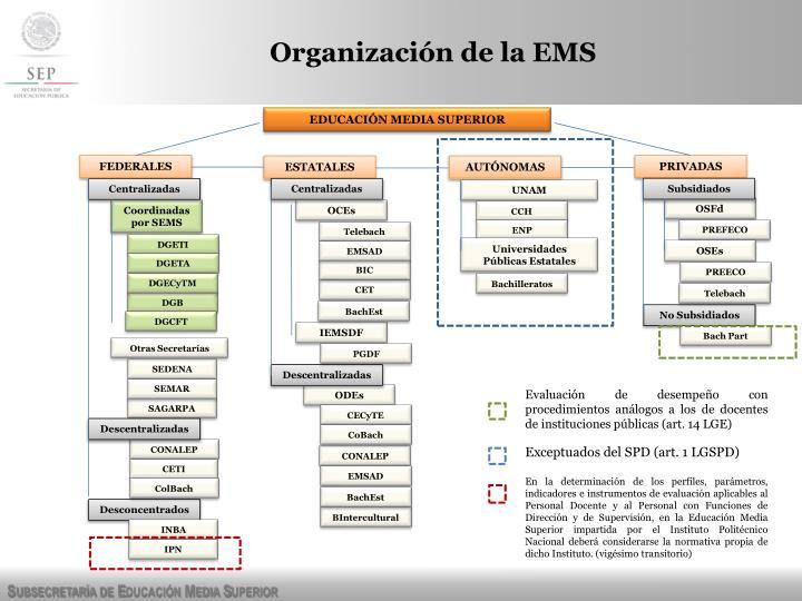 Organización de la EMS
