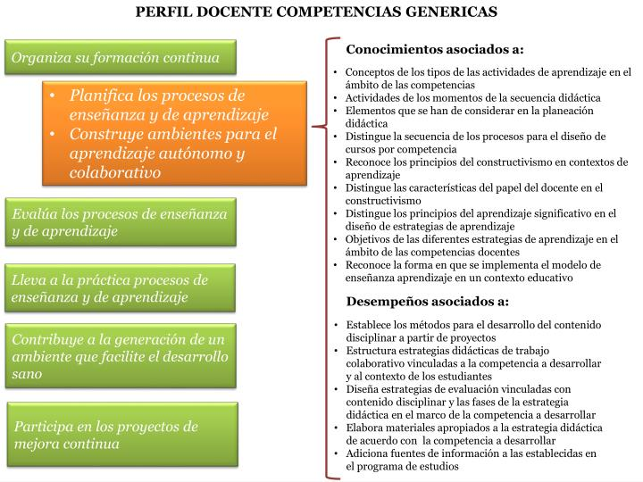 PERFIL DOCENTE COMPETENCIAS GENERICAS