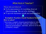 what kind of teacher