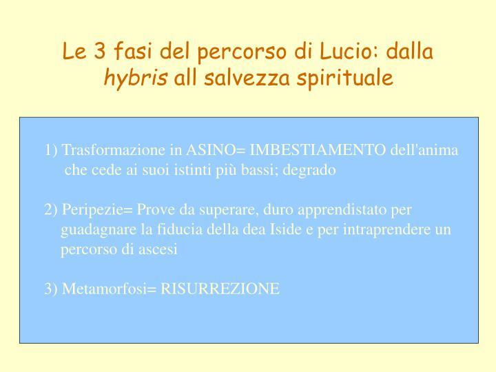 Le 3 fasi del percorso di Lucio: dalla