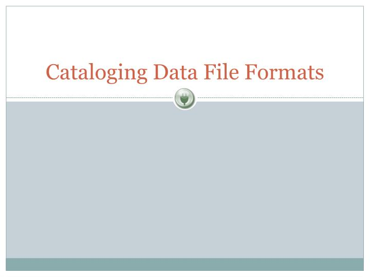 Cataloging Data File Formats