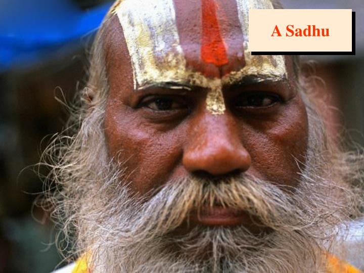 A Sadhu