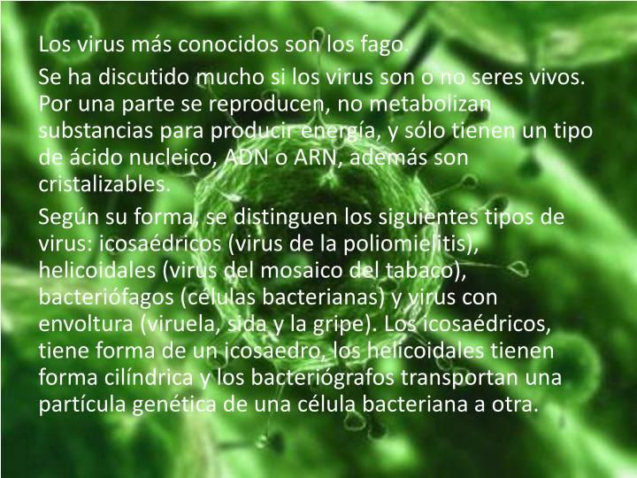 Los virus más conocidos son los fago.