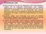 dunasal sal