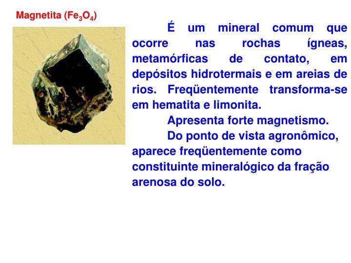 Magnetita (Fe