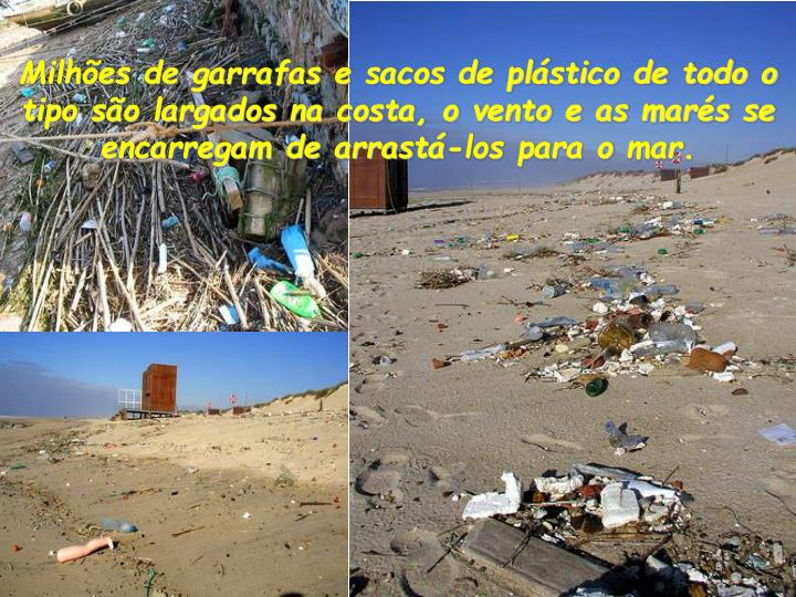 Milhões de garrafas e sacos de plástico de todo o tipo são largados na costa, o vento e as marés se encarregam de arrastá-los para omar.