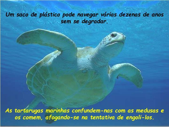 Um saco de plástico pode navegar várias dezenas de anos