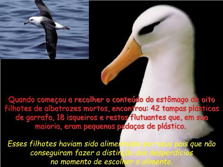 Quando começou a recolher o conteúdo doestômago de oito filhotes de albatrozes mortos, encontrou: 42 tampasplásticas de garrafa, 18 isqueiros e restos flutuantes que, em sua maioria, eram pequenos pedaços de plástico.