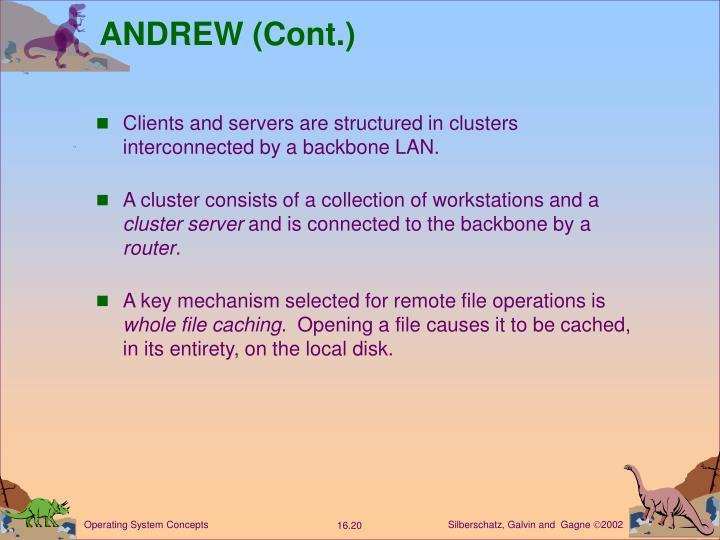 ANDREW (Cont.)