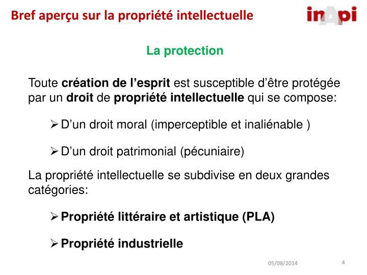 Bref aperçu sur la propriété intellectuelle