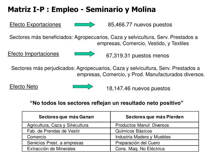 Matriz I-P : Empleo - Seminario y Molina
