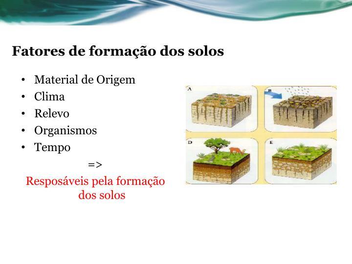 Fatores de formação dos solos