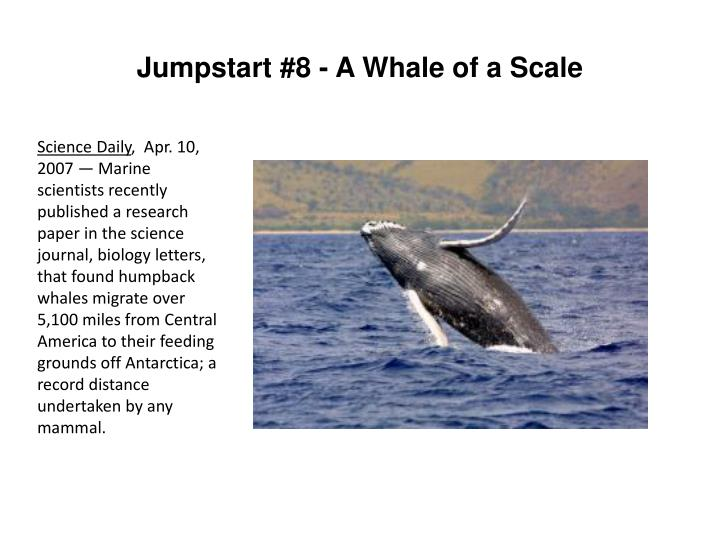 Jumpstart #8 - A Whale of a Scale