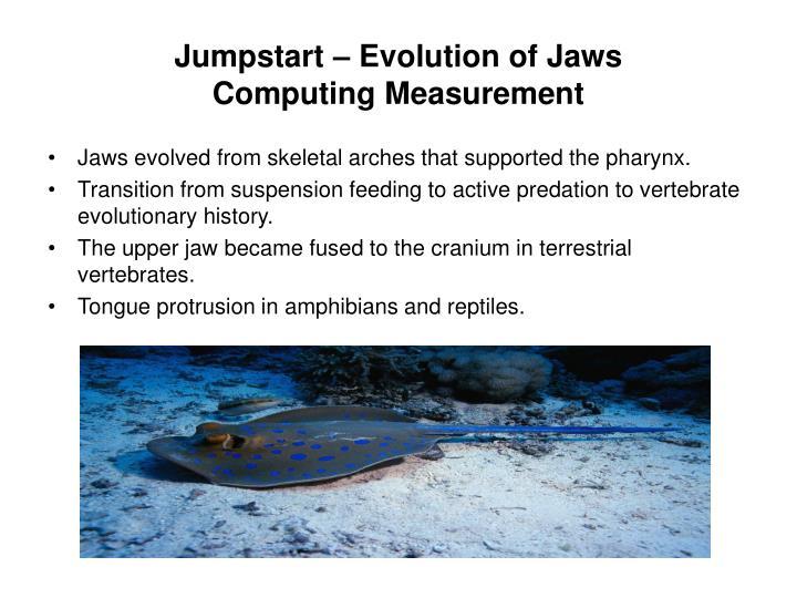 Jumpstart – Evolution of Jaws