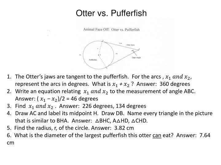 Otter vs.