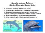questions about dolphins marine mammals master math