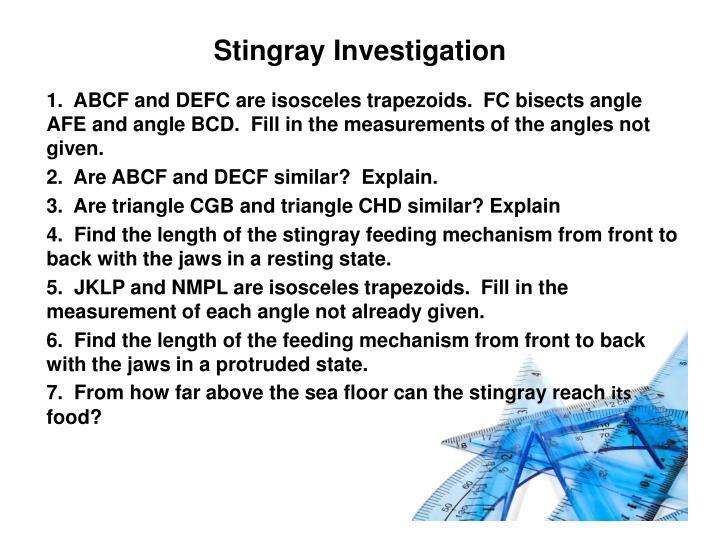 Stingray Investigation